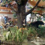 Heritage Park Nature Center